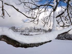 Schneeshilouette